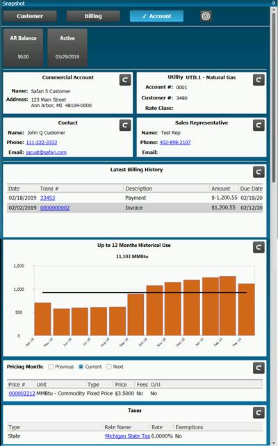 EnSite Safari 5 Customer Snapshot